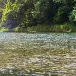 Itinerario del descenso del sella en canoa